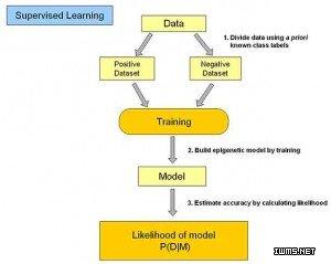 机器学习领域的几种主要学习方式